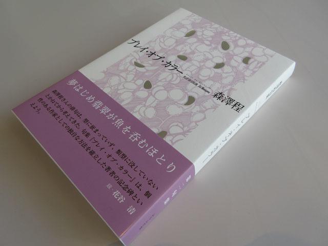 森澤程句集『プレイ・オブ・カラー』